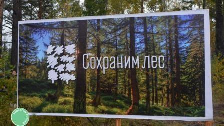 """Всероссийская акция """"Сохраним лес"""""""